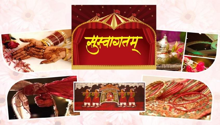koli meaning in hindi